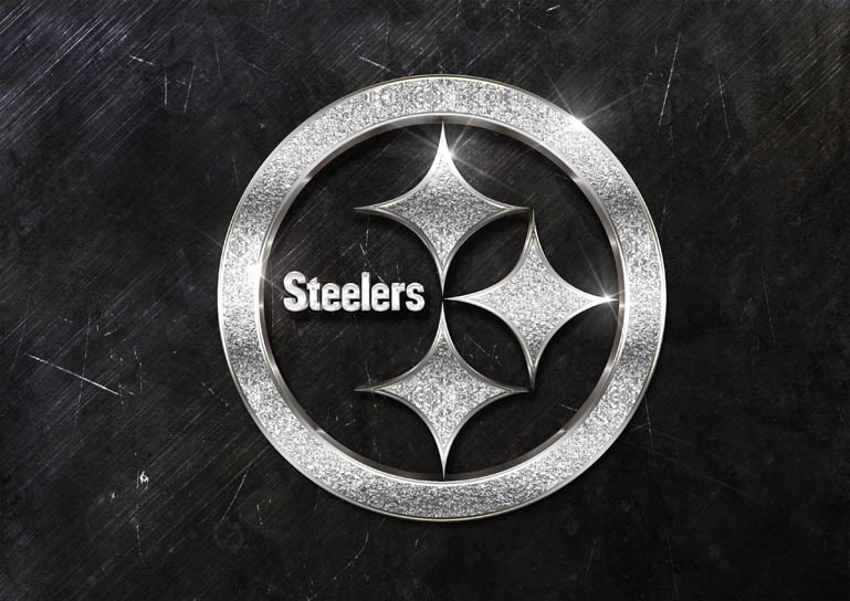 pittsburgh steelers 3d silver sparkle